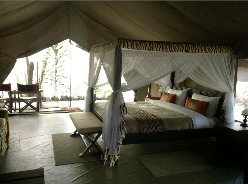 1晚内罗毕酒店+4晚Mara River Camp住宿