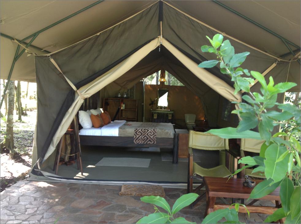 【动物大迁徙】肯尼亚内罗毕+马赛马拉5晚7日度假